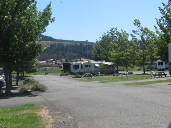 Rice Hill, Oregon: The sites ar Rice Hill RV Park are wonderfullt well maintained.