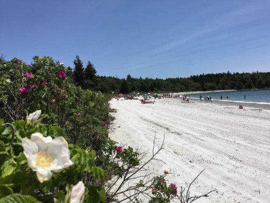 ‪Pemaquid Beach Park‬