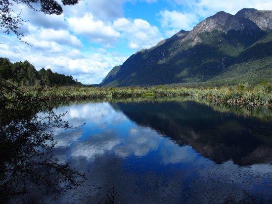 Fiordland National Park (Te Wahipounamu) : photo0.jpg