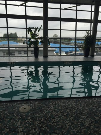Westin Wall Centre Vancouver Airport: calm swim with glass wall