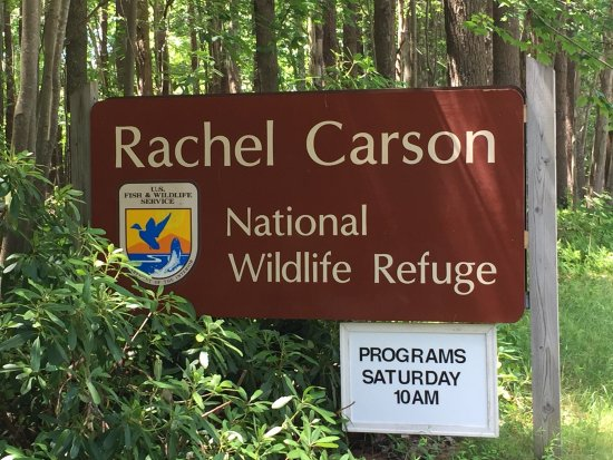 ‪Rachel Carson National Wildlife Refuge‬