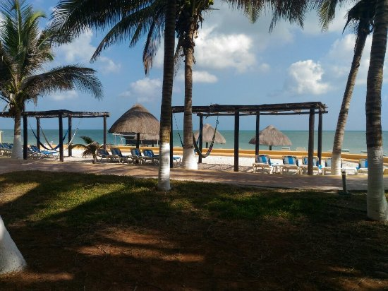 Hotel Reef Yucatan - All Inclusive & Convention Center: P_20160502_092831_large.jpg