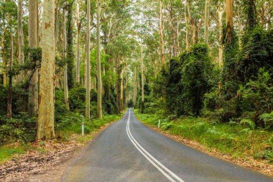 Shoalhaven, Australien: Murramarang National Park - Kioloa