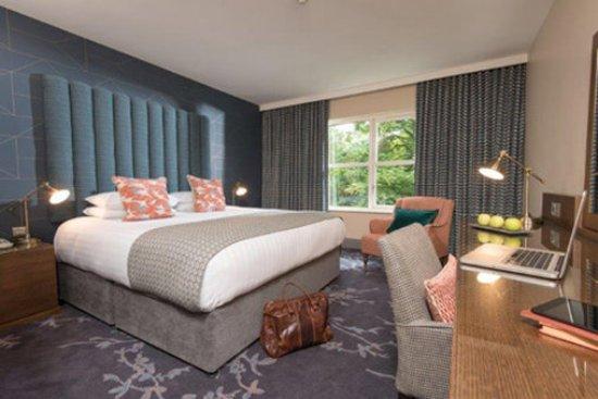 Clandeboye Lodge Hotel : Sup Std Room