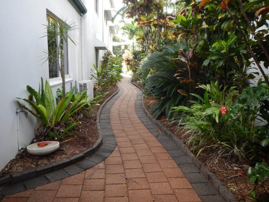 Beachfront Apartments on Trinity Beach: Lovely gardens and landscaping at Beachfront Apartments, Trinity Beach