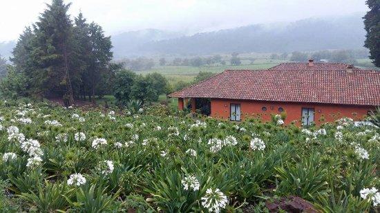 Rancho Epenche: Vista a 100 metros de la casa