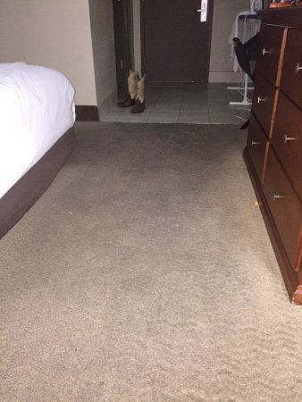 Westlake, LA: Clean or replace. Too much dinero going thru this place for the carpet to be this filthy!  Do wh