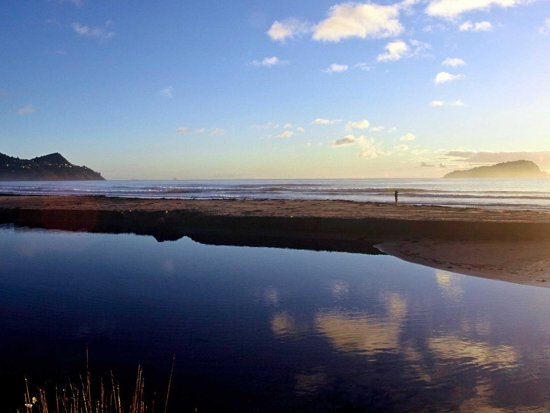 Pauanui, New Zealand: Other