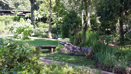 Fort Canning Park Photo