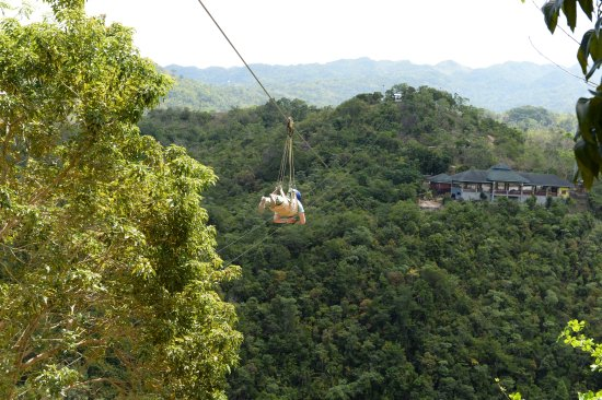 Image result for danao adventure park
