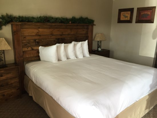 Evergreen Motel Photo