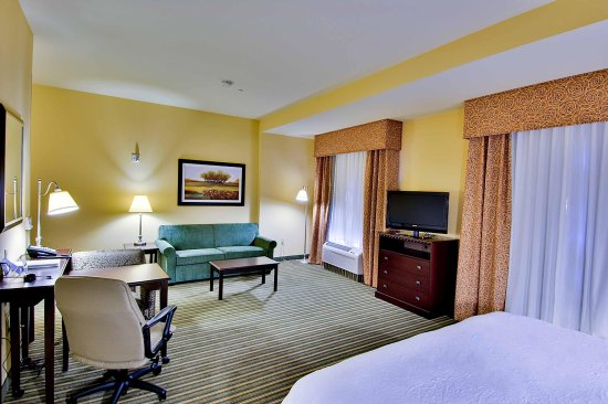 Hampton Inn & Suites West Sacramento: 1 King Bed Suite with Sofabed