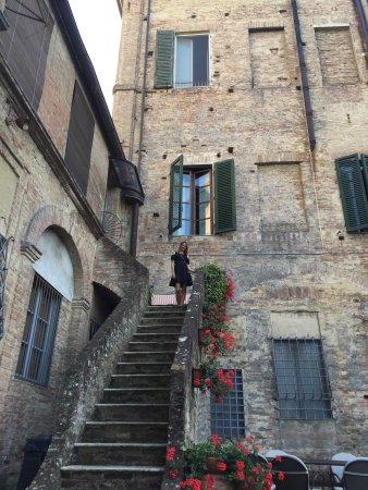 写真Palazzo Bruchi枚