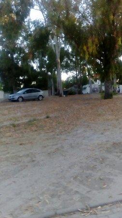 Parque de campismo Orbitur Evora: DSC_1174_large.jpg