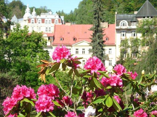 Belvedere Spa Hotel Photo
