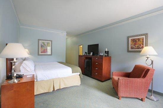 Holiday Inn Express Tampa North - Telecom Park: King Standard