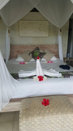 Villa Shantiasa: This was our very welcoming room!