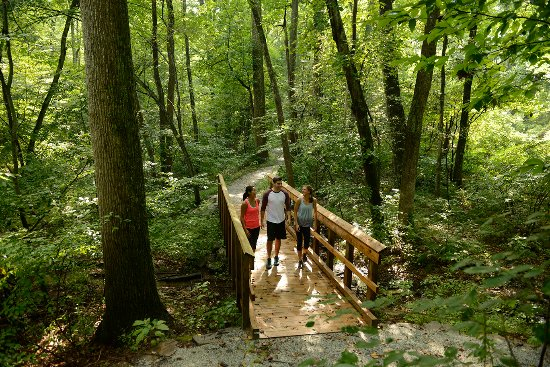 Gettysburg, PA: Get lost in the woods at Strawberry Hill Nature Preserve