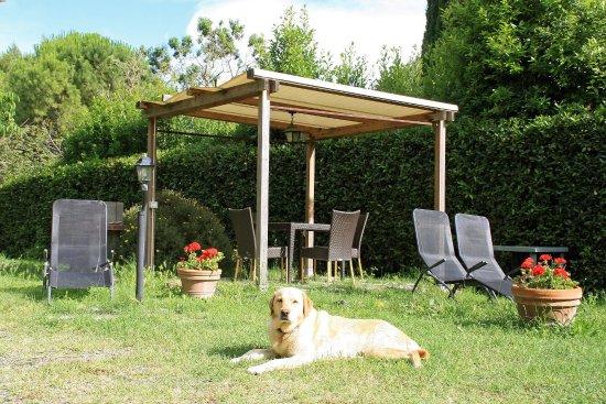 Pomaia, Italien: Relax in giardino dopo la giornata al mare