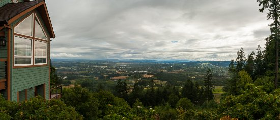 Chehalem Ridge Bed and Breakfast: The view