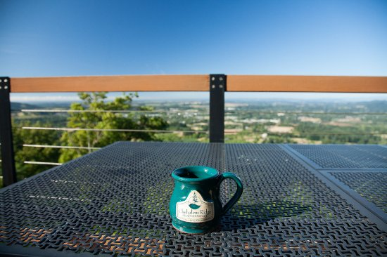 Chehalem Ridge Bed and Breakfast: Enjoying the view with morning coffee