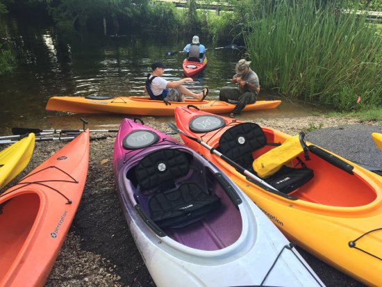Everglades Rentals & Eco Adventures: photo7.jpg
