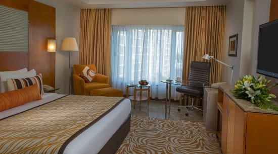 هوتل راديسون بلو أحمد آباد: Guest Room