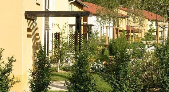 Lissieu, Francia: Garden