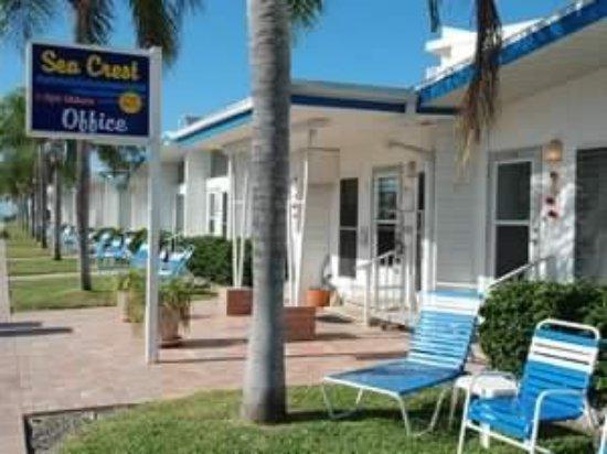 Sea Crest Apartments on Siesta Key: photo2.jpg