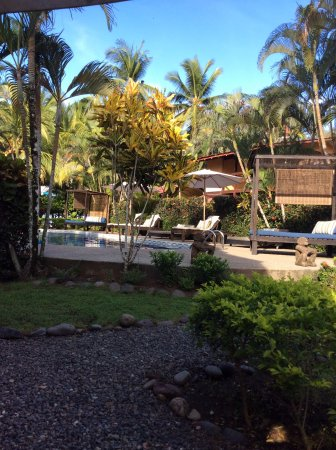 Encantada Ocean Cottages : View from the porch of Cabina 2