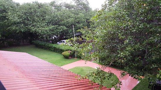 紅樹林旅館照片