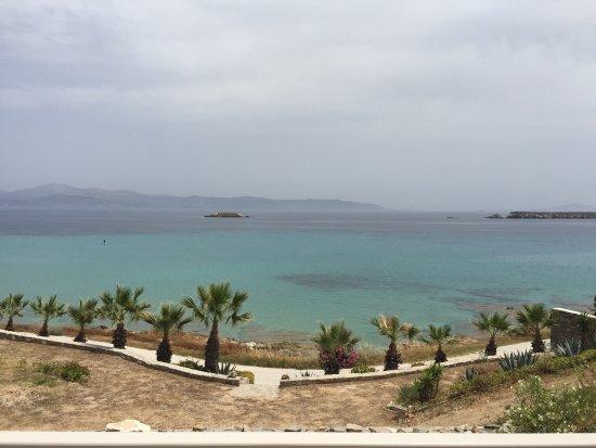 Nea Chryssi Akti, Греция: photo0.jpg