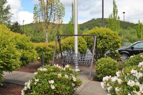 Super 8 Roseburg: Landscape