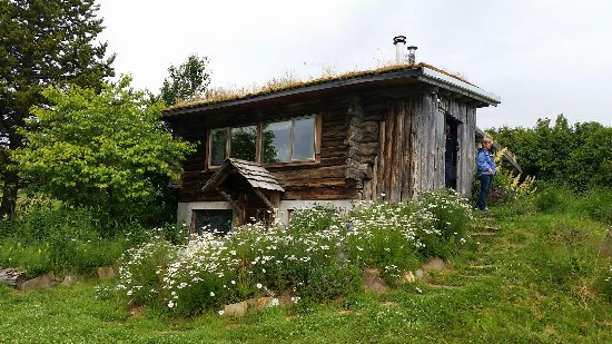 Picture of kilcher homestead living museum for How to get a homestead in alaska