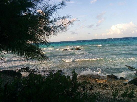 Tevahine Dream : Loved our stay!