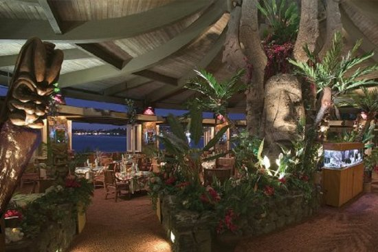 Kona Banyan Tree: Don The Beachcombers