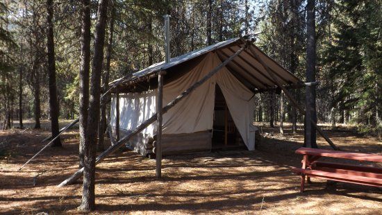 De Borgia, MT: Soft walled tents on lodge pole pines, wood floors, wood burning stove, fire ring