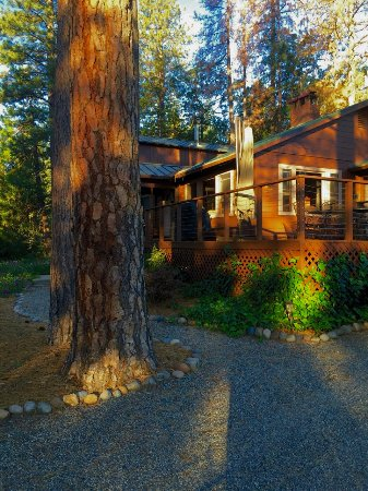 Idyllwild, Californië: Bass Lake Cabin