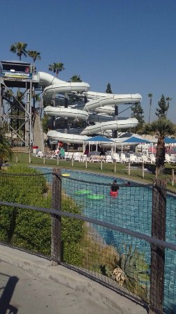 Knott's Soak City U.S.A.: photo1.jpg