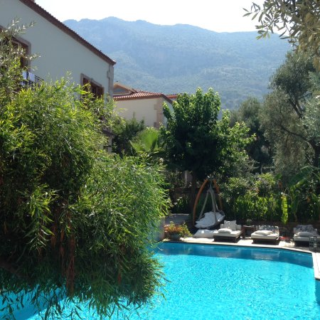 Jade Residence Photo
