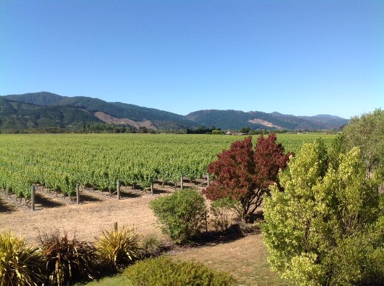 Vintners Retreat : View from our villa