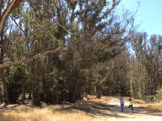 Goleta, Califórnia: Entrance to Park