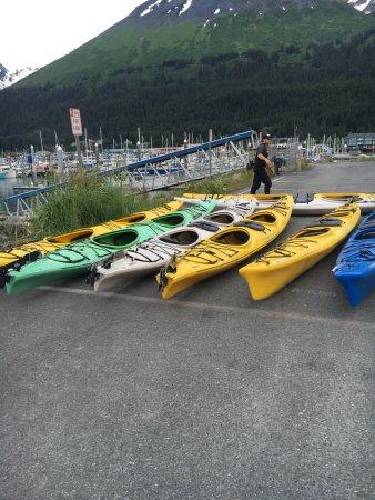 Kayak Adventures Worldwide - Day Trips: Kayaks to load up.