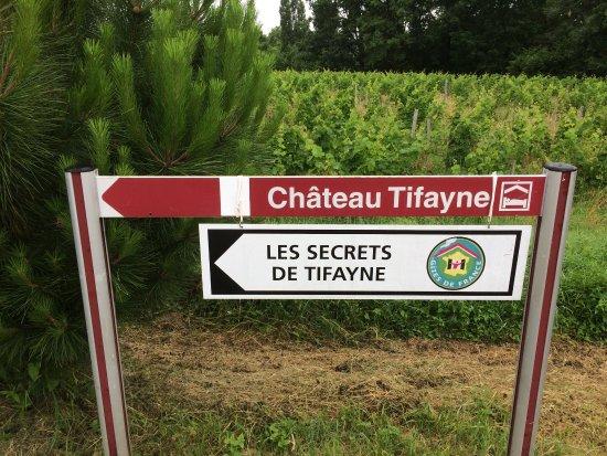 Puisseguin, Frankrijk: photo0.jpg