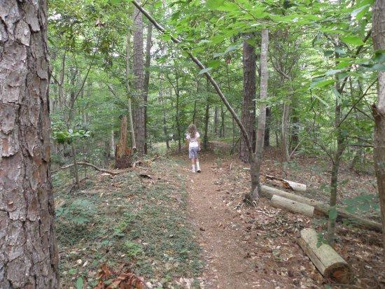 Lothian, MD: hiking path