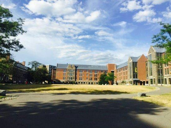 Cornell University: IMG-20160701-WA0017_large.jpg