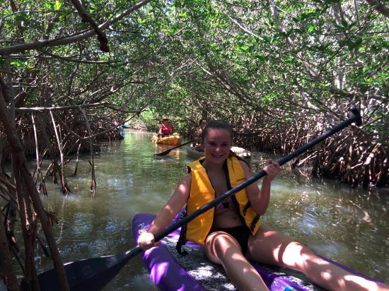 Ric Hinmans Lazy Days Kayak Tours: Our group of 5 had a blast on our leisurely kayak tour---we also did have + a stand up paddleboa