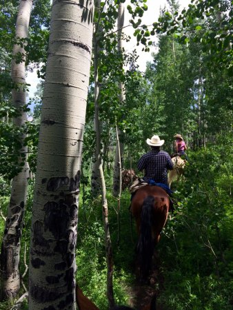 Drowsy Water Ranch: Along the Aspen Slide Trail