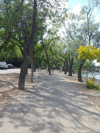 Wascana Centre Park : 20160629_160915_large.jpg