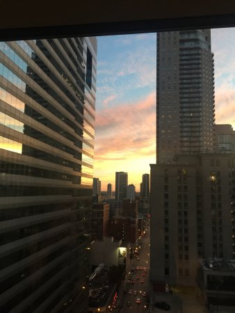 Homewood Suites by Hilton Chicago-Downtown: Pool deck view